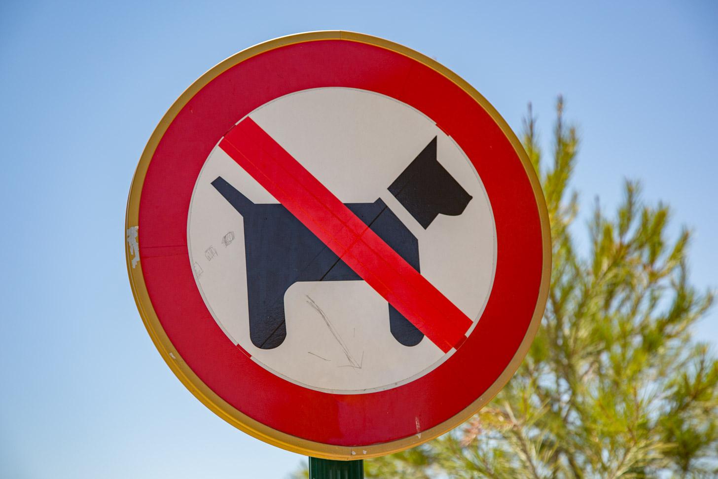Honden mogen het strand niet op